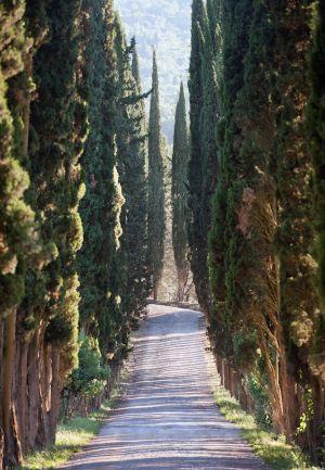 ItalyTuscany_0810_131.jpg